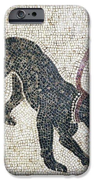 Roman Guard Dog Mosaic iPhone Case by Sheila Terry