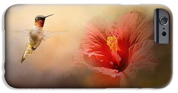 Floral Photographs iPhone Cases - Romancing The Hibiscus iPhone Case by Jai Johnson