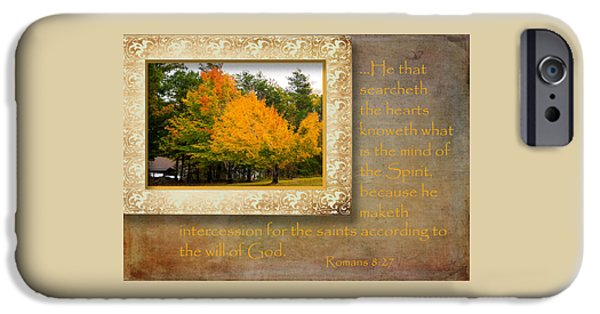 Tree Art Print iPhone Cases - Romans Comfort Series II iPhone Case by Larry Bishop