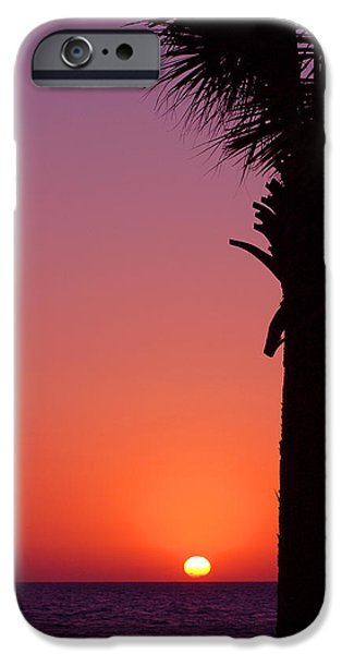 Trees At Sunset iPhone Cases - Romantic Sunset iPhone Case by Susanne Van Hulst
