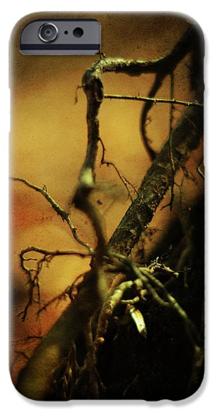 Tree Roots iPhone Cases - Roots of Life iPhone Case by Rebecca Sherman