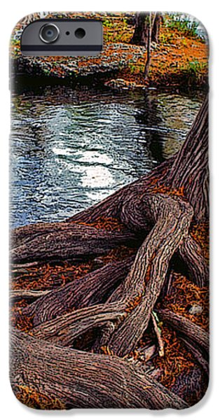 Roots on the River iPhone Case by Stephen Anderson