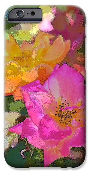 Rose 114 iPhone Case by Pamela Cooper