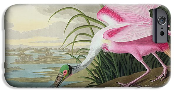Sky Paintings iPhone Cases - Roseate Spoonbill iPhone Case by John James Audubon