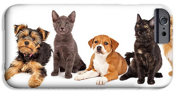 Little iPhone Cases - Row of Puppies and Kittens iPhone Case by Susan  Schmitz