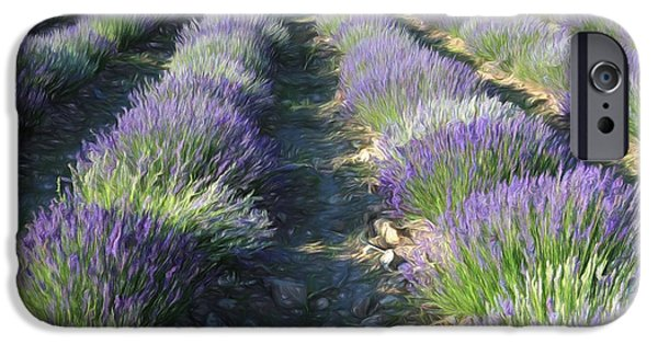 Agriculture iPhone Cases - Rows Of Lavender 2 iPhone Case by Donna Kennedy