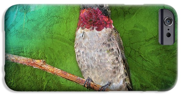 Archilochus Colubris iPhone Cases - Ruby Throated Hummingbird iPhone Case by Betty LaRue