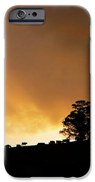 Rural Glory iPhone Case by Mike  Dawson
