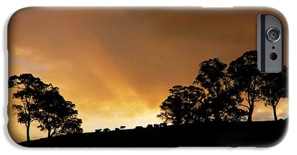 Sunset iPhone Cases - Rural Glory iPhone Case by Mike  Dawson