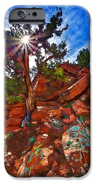 Earth Tones Photographs iPhone Cases - Sacred Ground - Shamans Dome Juniper iPhone Case by Bill Caldwell -        ABeautifulSky Photography