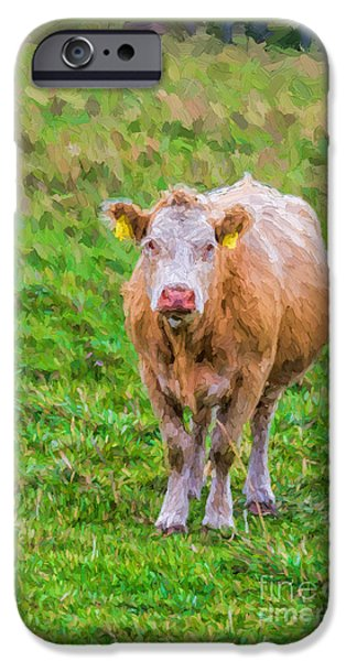 One iPhone Cases - Sad Cow - painterly iPhone Case by Les Palenik