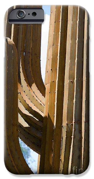 Hightower iPhone Cases - Saguaro Cactus in Steel iPhone Case by Tim Hightower