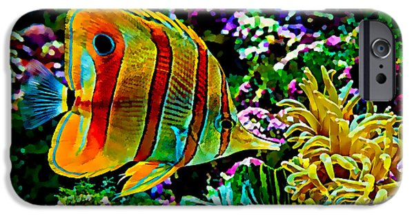 Best Sellers -  - Sea iPhone Cases - Saltwater Butterflyfish iPhone Case by Marvin Blaine