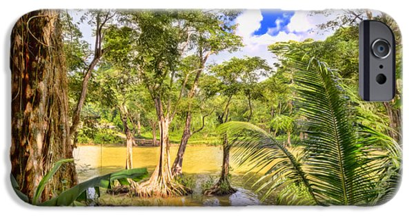 Mangrove Forest iPhone Cases - Salybia River iPhone Case by Nadia Sanowar