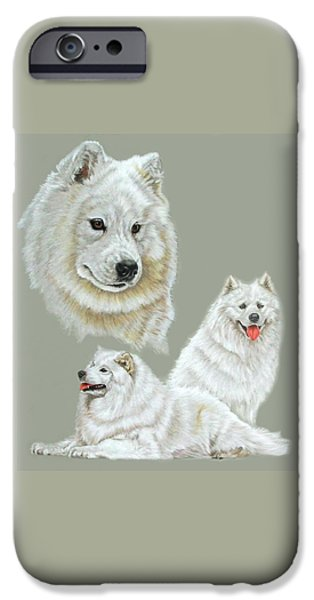 Dogs iPhone Cases - Samoyed iPhone Case by Barbara Keith