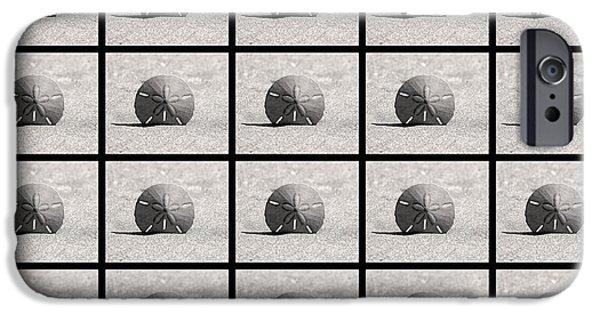 Jordan iPhone Cases - Sand Dollars Collage black iPhone Case by Rosanne Jordan