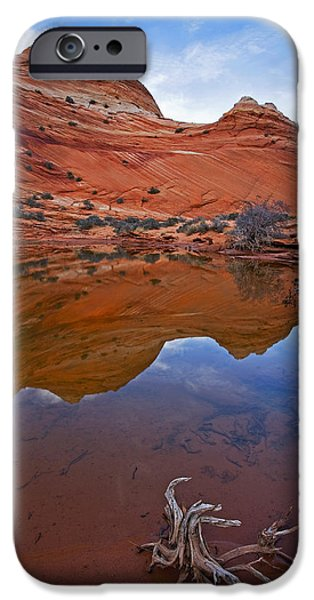 Coyote iPhone Cases - Sandstone Pools iPhone Case by Mike  Dawson