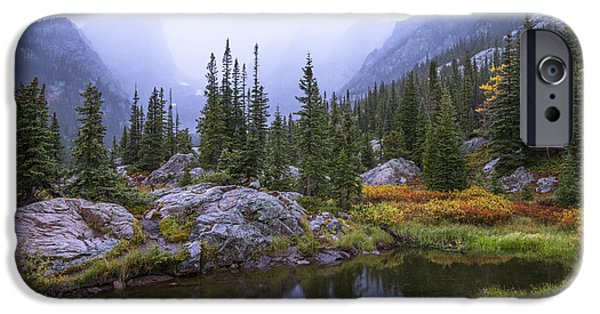 Storm Photographs iPhone Cases - Saturated Forest iPhone Case by Chad Dutson