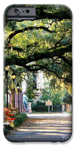 Savannah iPhone Cases - Savannah Park Sidewalk iPhone Case by Carol Groenen