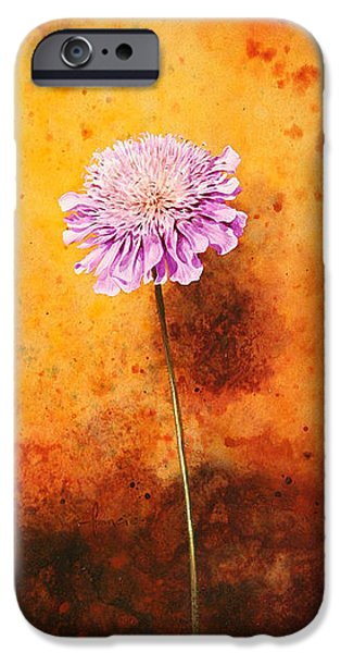 Floral Digital Art Digital Art iPhone Cases - Scabious iPhone Case by John Francis