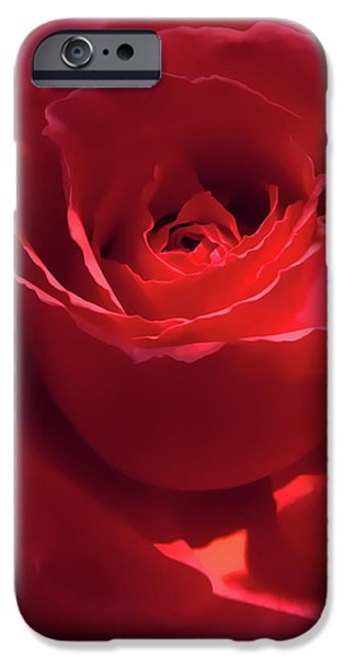Scarlet Rose Flower iPhone Case by Jennie Marie Schell