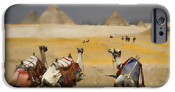 Historic Site iPhone Cases - Scenic view of the Giza Pyramids with sitting camels iPhone Case by David Smith