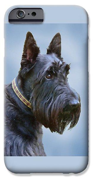 Scottish Dog iPhone Cases - Scottish Terrier Dog iPhone Case by Jennie Marie Schell