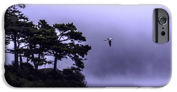 Fog Mist iPhone Cases - Sea Gull in the Mist iPhone Case by Gary Bengsch