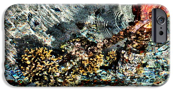 Nature Study iPhone Cases - Sea. Rusty Iron And Corals. iPhone Case by Andy Za