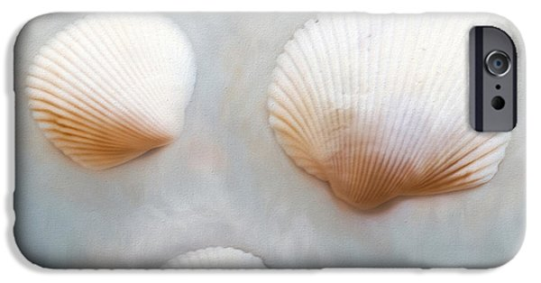 Beach iPhone Cases - Sea Shells iPhone Case by Darren Fisher
