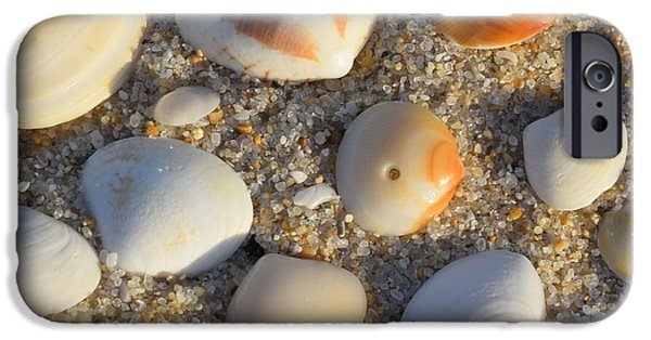 Canoe iPhone Cases - Sea Shells under the Sea Shore iPhone Case by Anna