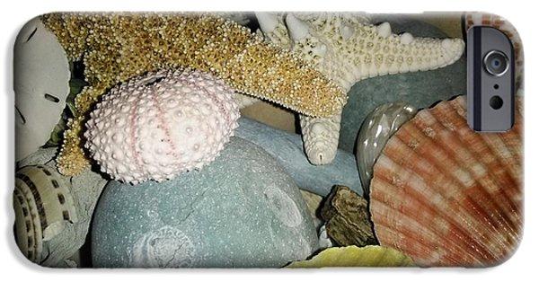 Pastel iPhone Cases - Sea Treasures iPhone Case by Patricia Ducher