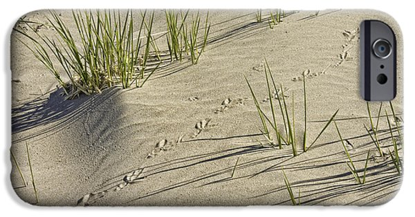 Sand Dunes iPhone Cases - Seagull Footprints and Beach Grass Popham Beach Maine iPhone Case by Keith Webber Jr