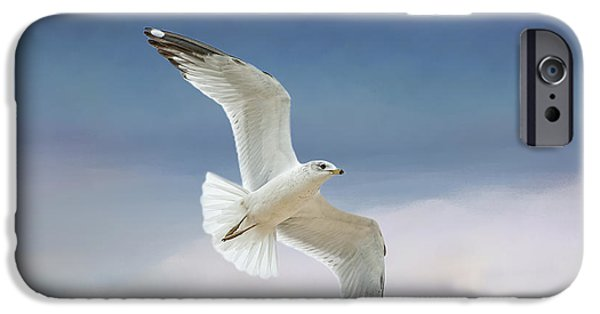Flying Seagull iPhone Cases - Seagull in Flight iPhone Case by Bonnie Barry