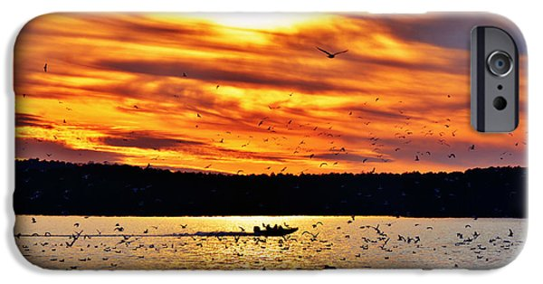 Jordan iPhone Cases - Seagull Sunset at Jordan Lake iPhone Case by Kelly Nowak