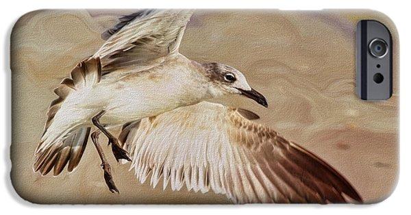 Flight iPhone Cases - Seagull Swirl iPhone Case by Deborah Benoit