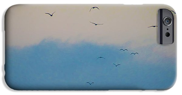 Seagull iPhone Cases - Seagulls Aloft iPhone Case by Bill Cannon