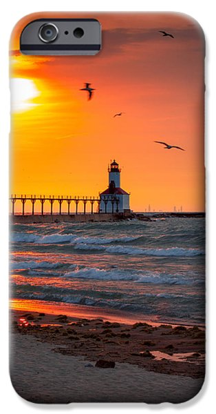 Flying Seagull iPhone Cases - Seagulls at Sunset iPhone Case by Jackie Novak