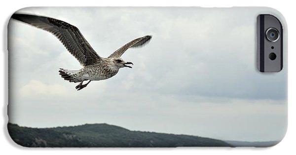 Sea Birds Tapestries - Textiles iPhone Cases - Seagulls in flight. iPhone Case by Giuseppe Elio Cammarata