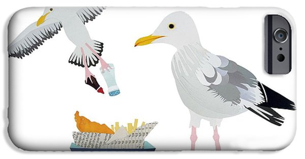 Chip Drawings iPhone Cases - Seagulls iPhone Case by Isobel Barber