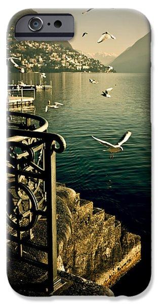 Switzerland iPhone Cases - Seagulls iPhone Case by Joana Kruse