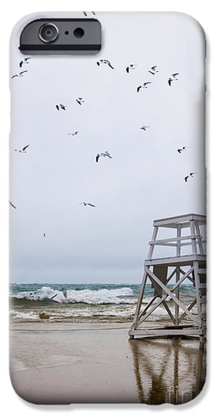 Flying Seagull iPhone Cases - Seagulls iPhone Case by Margie Hurwich