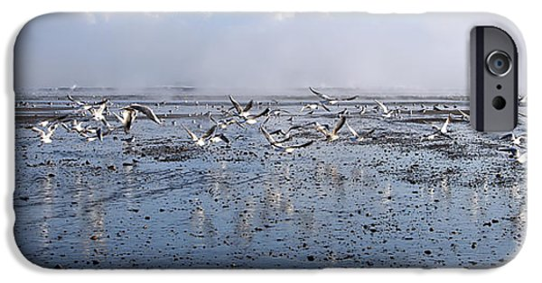 Flying Seagull iPhone Cases - Seagulls iPhone Case by Svetlana Sewell