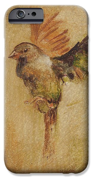 Crows iPhone Cases - Searching iPhone Case by Vali Irina Ciobanu