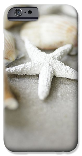 Texture iPhone Cases - Seashells And White Starfish On Sand iPhone Case by Ink and Main