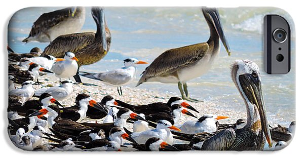 Sea Birds iPhone Cases - Seashore Gathering iPhone Case by Marilee Noland