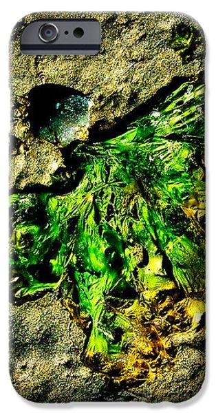 Seaside Angel iPhone Case by Venetta Archer