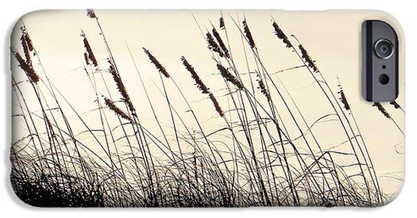 Pleasure iPhone Cases - Seaside Oats iPhone Case by Joy Hardee
