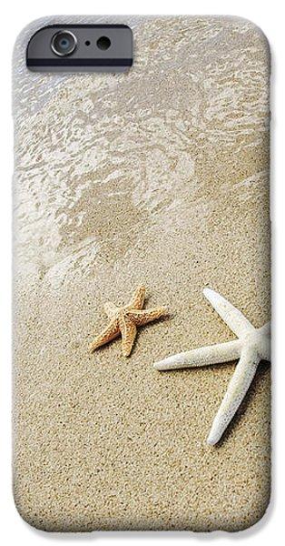 Seastars on Beach iPhone Case by Mary Van de Ven - Printscapes