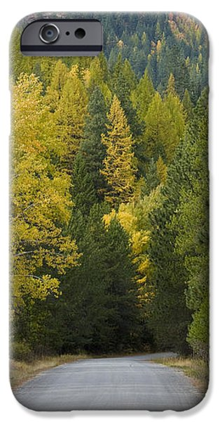 Selkirk Color iPhone Case by Idaho Scenic Images Linda Lantzy